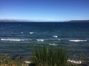 Lake Taupo with Mount Ngauruhoe in the background.
